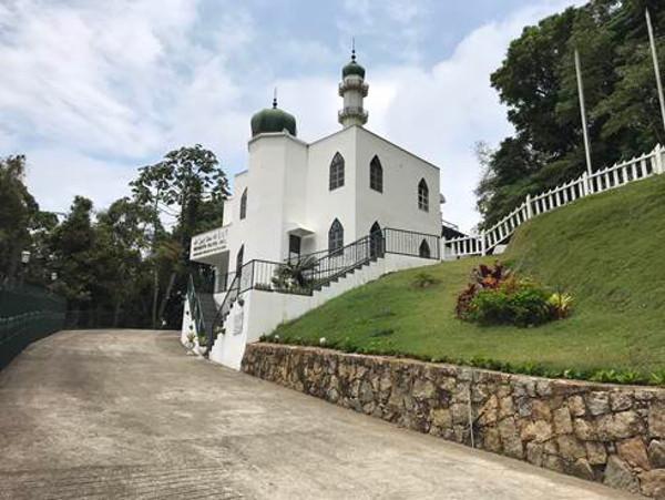 Mesquita - divulgação